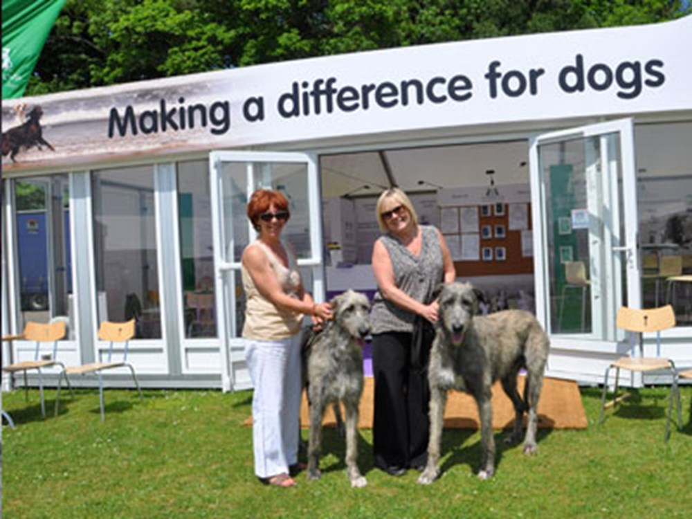 Dogs and owners stood outside Kennel Club stand