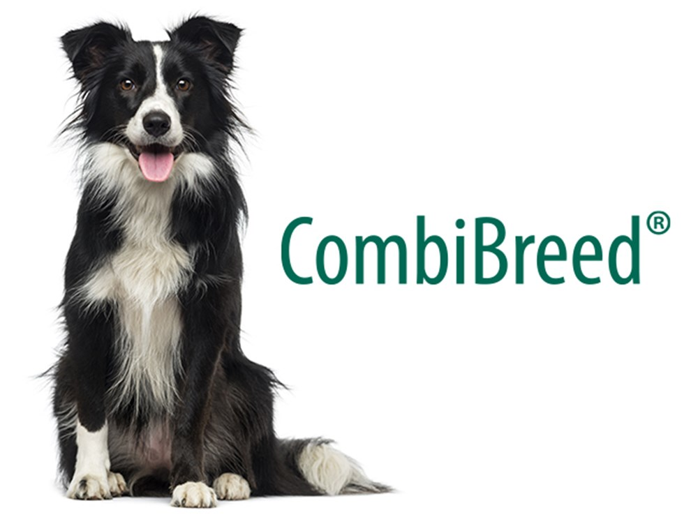 CombiBreed logo