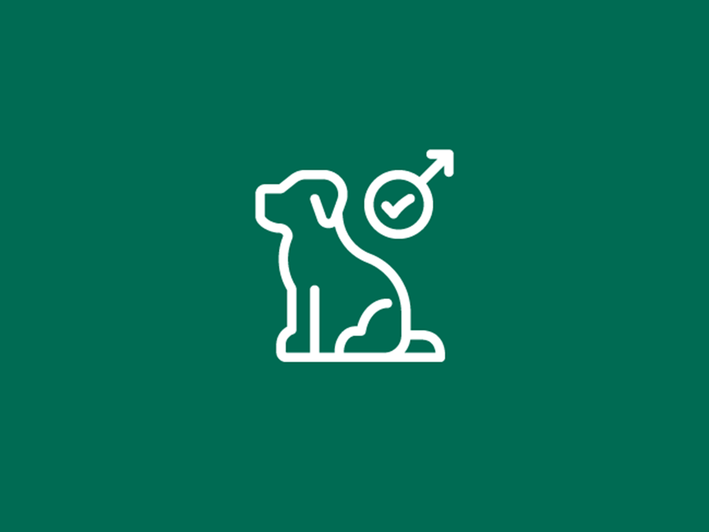 Shop icon for stud dog only membership