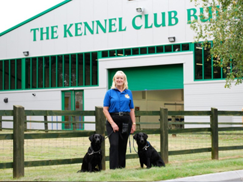 Two black dogs sat out the front of the Kennel Club building with a handler