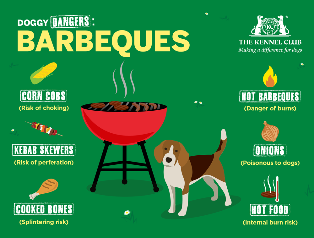 Infographic about barbeques