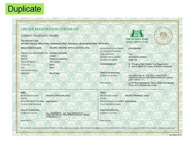 Duplicated Owner Registration Certificate