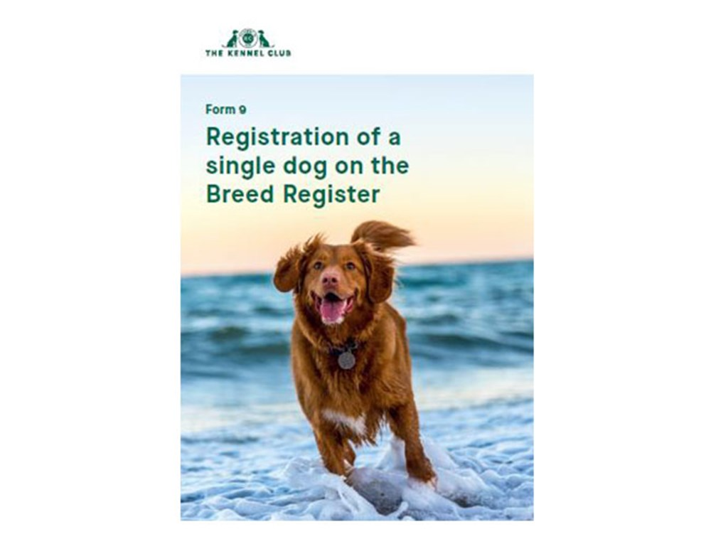 Cover page for form for registering a single dog